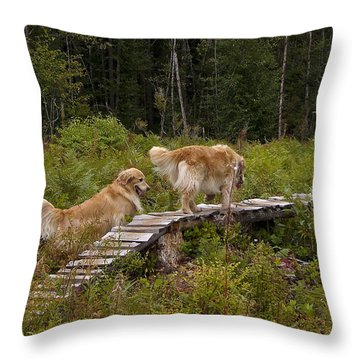 Best Friends Throw Pillow by Rhonda McDougall