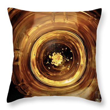 Throw Pillow featuring the photograph Best Of Award Of Excellence by Danica Radman