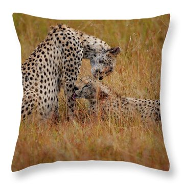 Best Of Friends Throw Pillow by Nichola Denny