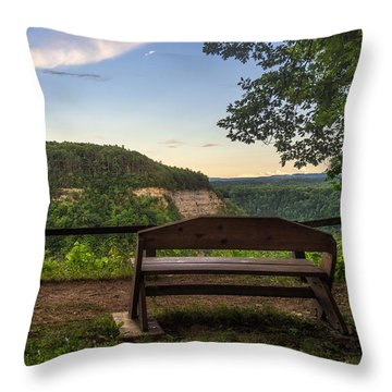 Throw Pillow featuring the photograph Best Seat In The House by Mark Papke