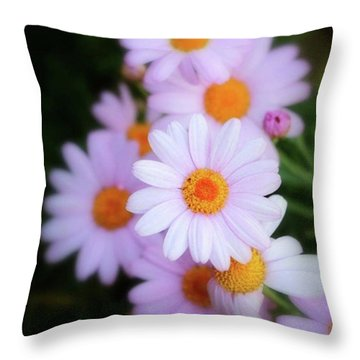 Throw Pillow featuring the photograph Best Wishes In This Time Of Loss by Mr Photojimsf