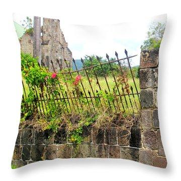 Better Days Throw Pillow by Ian  MacDonald