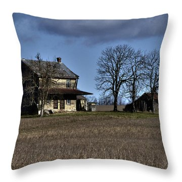 Throw Pillow featuring the photograph Better Days by Robert Geary