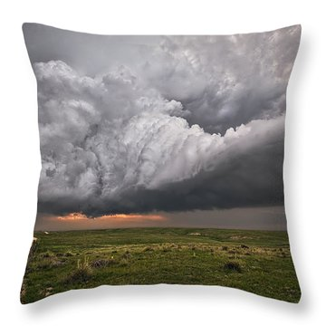 Better Late Than Never Throw Pillow