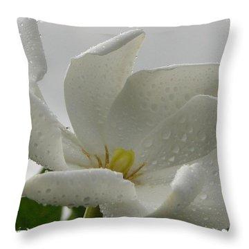 Bettyann Throw Pillow by Priscilla Richardson