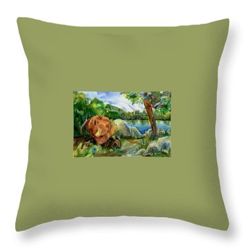 Between A Rock And Hardplace Throw Pillow