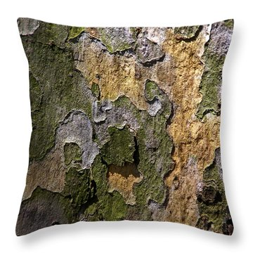 Throw Pillow featuring the photograph Between Light And Shadow by Lynda Lehmann