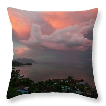 Between Rainstorms Throw Pillow