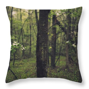 Throw Pillow featuring the photograph Between The Dogwoods by Shane Holsclaw