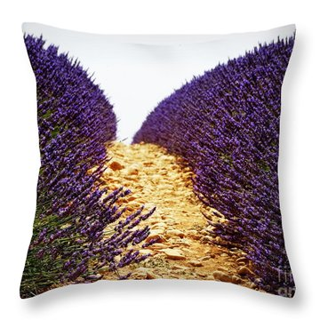 Between The Purple Throw Pillow