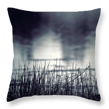 Throw Pillow featuring the photograph Between The Waters by Trish Mistric