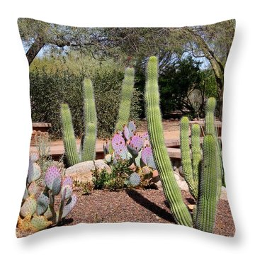 Throw Pillow featuring the photograph Between Walls by Kathryn Meyer