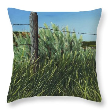Between You, Me And The Fence Post Throw Pillow
