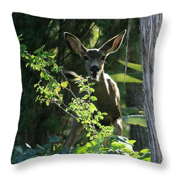 Beverly Hills Deer Throw Pillow by Marna Edwards Flavell