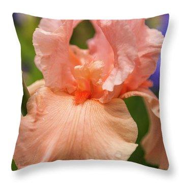 Beverly Sills Iris, 2 Throw Pillow