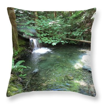 Throw Pillow featuring the photograph Beyond The End Of The Trail At Limpy Creek by Marie Neder
