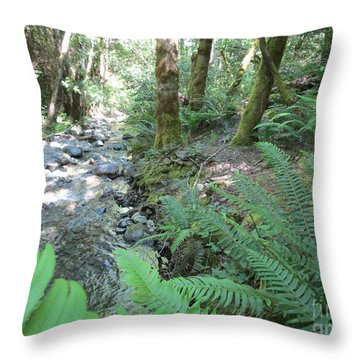 Throw Pillow featuring the photograph Beyond The Ferns by Marie Neder