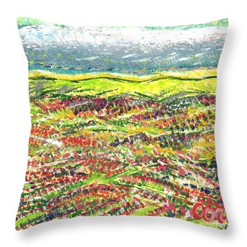 Beyond The Foothills Throw Pillow