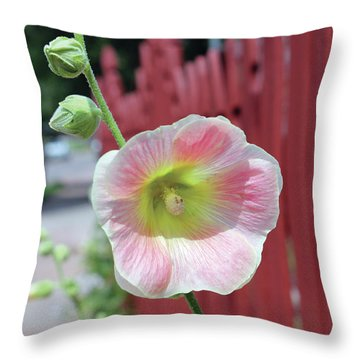 Beyond The Garden Fence Throw Pillow by Alycia Christine