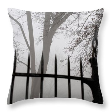 Beyond The Pale Throw Pillow