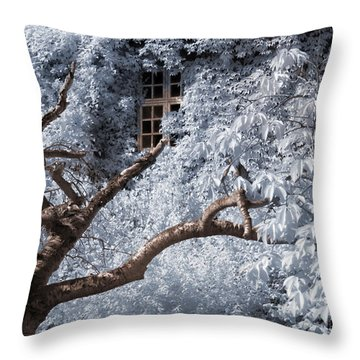 Beyond The Silver Tunnel Throw Pillow by Helga Novelli