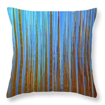 Throw Pillow featuring the digital art Beyond The Veil  by Gina Harrison