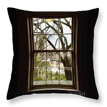 Beyond The Window Sill Throw Pillow