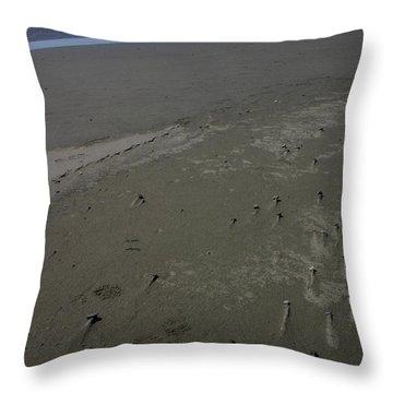 Beyond Windswept Throw Pillow