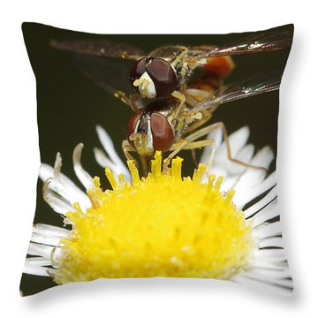 Bi-plane Position Throw Pillow
