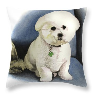 Bichon Sonny Throw Pillow