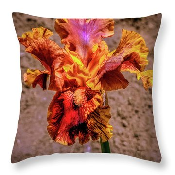 Bicolor Beauty Throw Pillow by Robert Bales