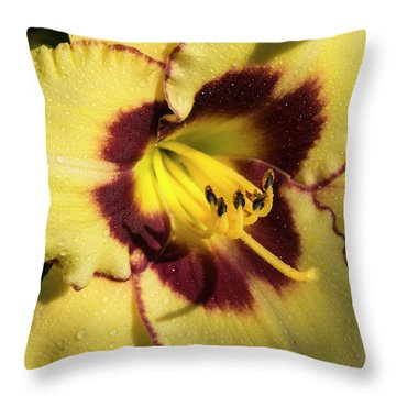 Throw Pillow featuring the photograph Bicolored Lily by Jean Noren