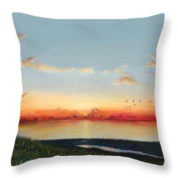 Big Assawoman Bay Throw Pillow