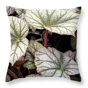 Big Begonia Leaves Throw Pillow