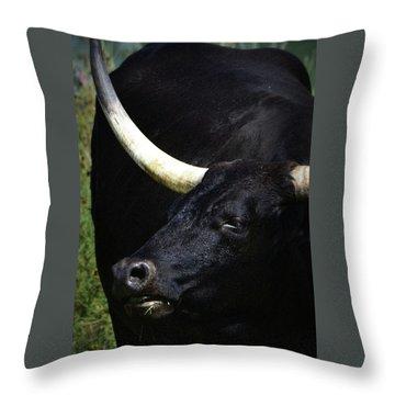 Big Blackie Throw Pillow by Nadalyn Larsen
