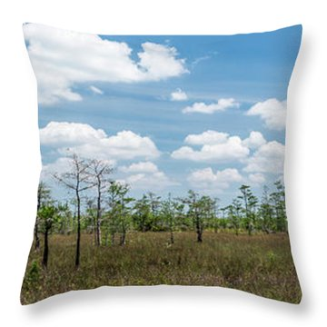 Throw Pillow featuring the photograph Big Cypress Marshes by Jon Glaser