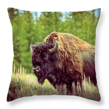 Big Daddy Throw Pillow by Robert Bales