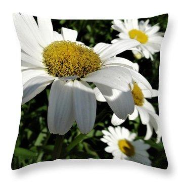 Big Daisy Throw Pillow