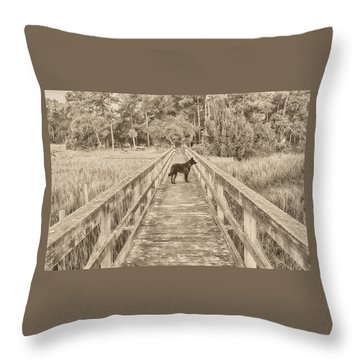 Throw Pillow featuring the photograph Big Dog by Margaret Palmer