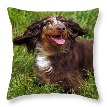 Big Ears Throw Pillow by Sally Weigand