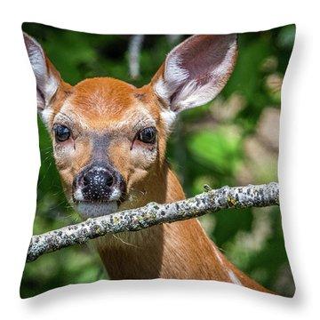 Big Eyed Fawn Throw Pillow