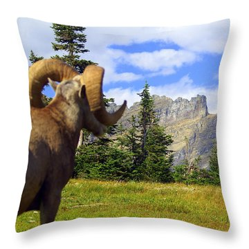 Big Horn 3 Throw Pillow by Marty Koch