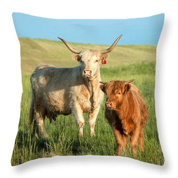 Big Horn, Little Horn Throw Pillow by Todd Klassy