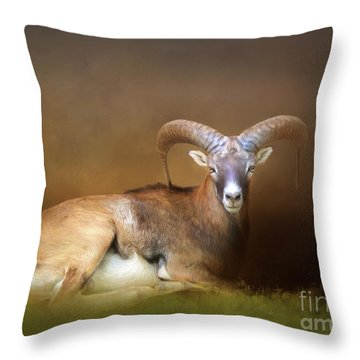 Big Horn Sheep Throw Pillow by Marion Johnson