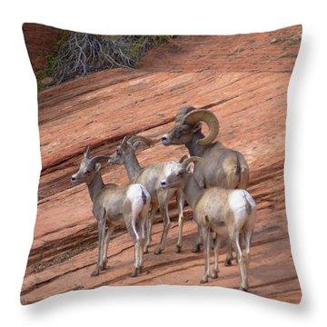 Big Horn Sheep, Zion National Park Throw Pillow