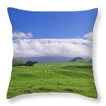 Big Island, Waimea Throw Pillow by Peter French - Printscapes