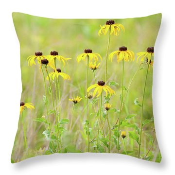 Throw Pillow featuring the photograph Big Meadows Black-eyed Susans by Lara Ellis