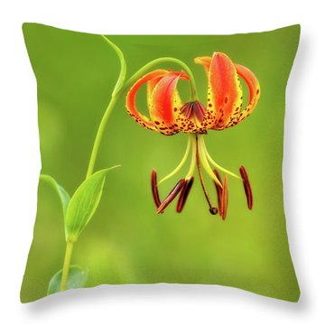 Throw Pillow featuring the photograph Big Meadows Turk's Cap Lily 1 by Lara Ellis