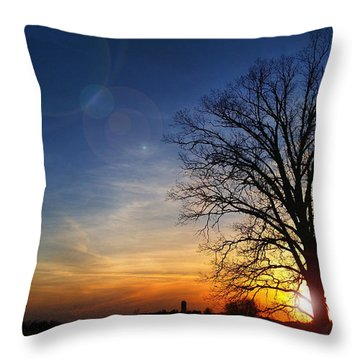 Big Oak Splendor Throw Pillow