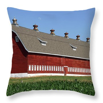 Big Red Barn In Spring Throw Pillow